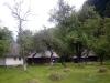 curte-muzeul-satului-branean